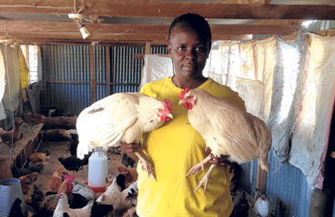 How to start your poultry farm business