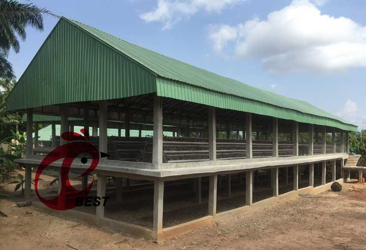 Chicken cage and poultry equipment of Hebei Best Machinery and Equipment Company in Africa