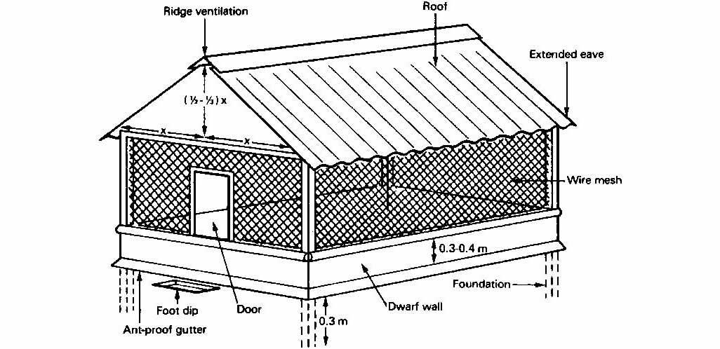 Free Chicken House Design Installation Video